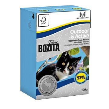 Bozita Cat Tetra Recard Outdoor & Active 190g (Menge: 16 je Bestelleinheit)